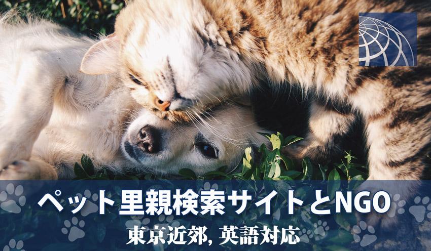 里親 犬 東京